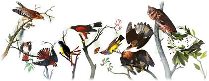 ครบรอบวันเกิด 226 ปีของ John James Audubon